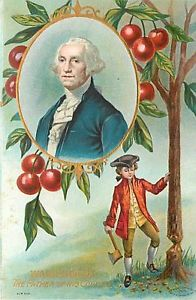 george washington cherry tree